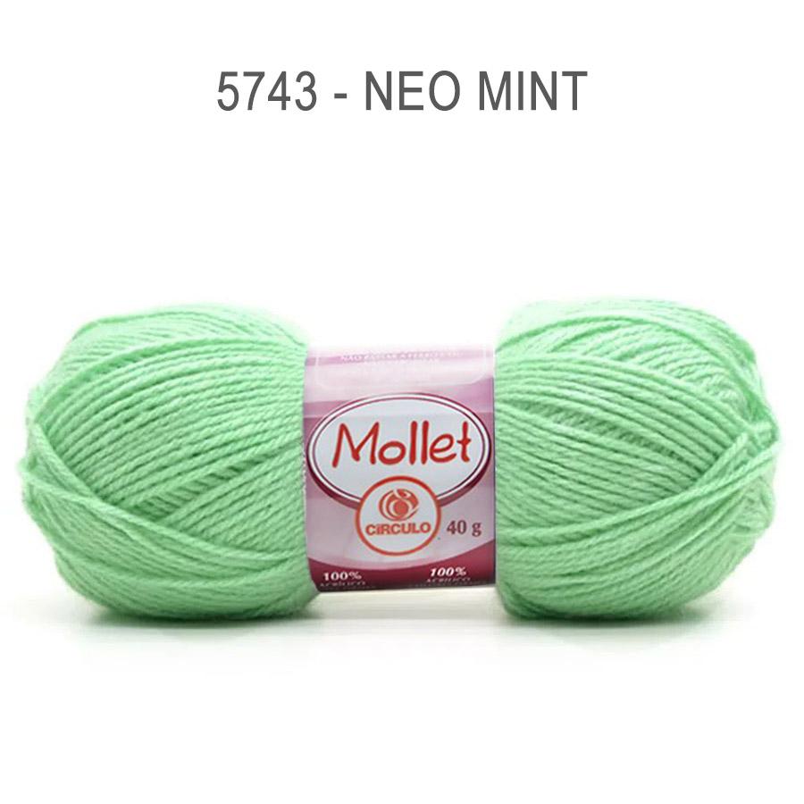 Lã Mollet 40g Cores Lisas - Circulo - 5743 - Neo Mint