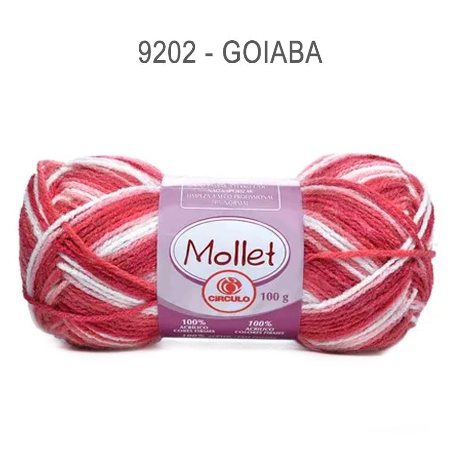 Lã Mollet 100g Multicolor - Circulo - 9202 - Goiaba
