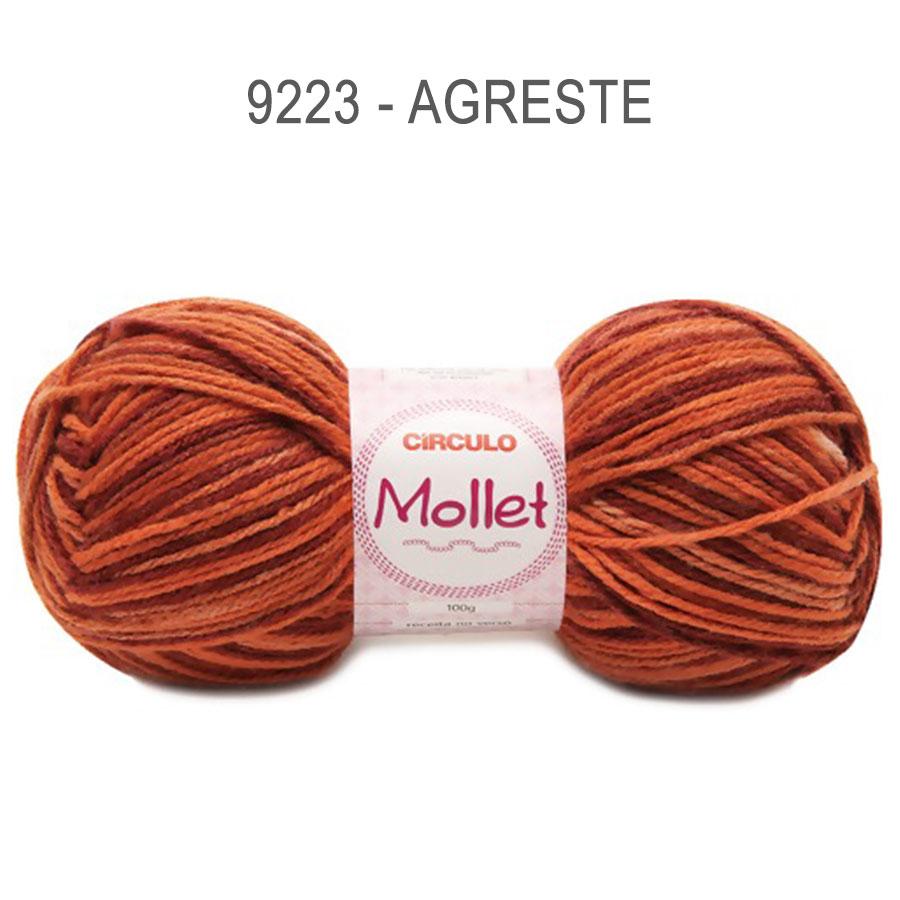 Lã Mollet 100g Multicolor - Circulo - 9223 - Agreste