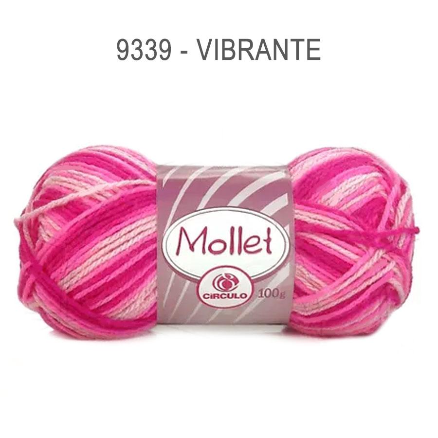 Lã Mollet 100g Multicolor - Circulo - 9339 - Vibrante