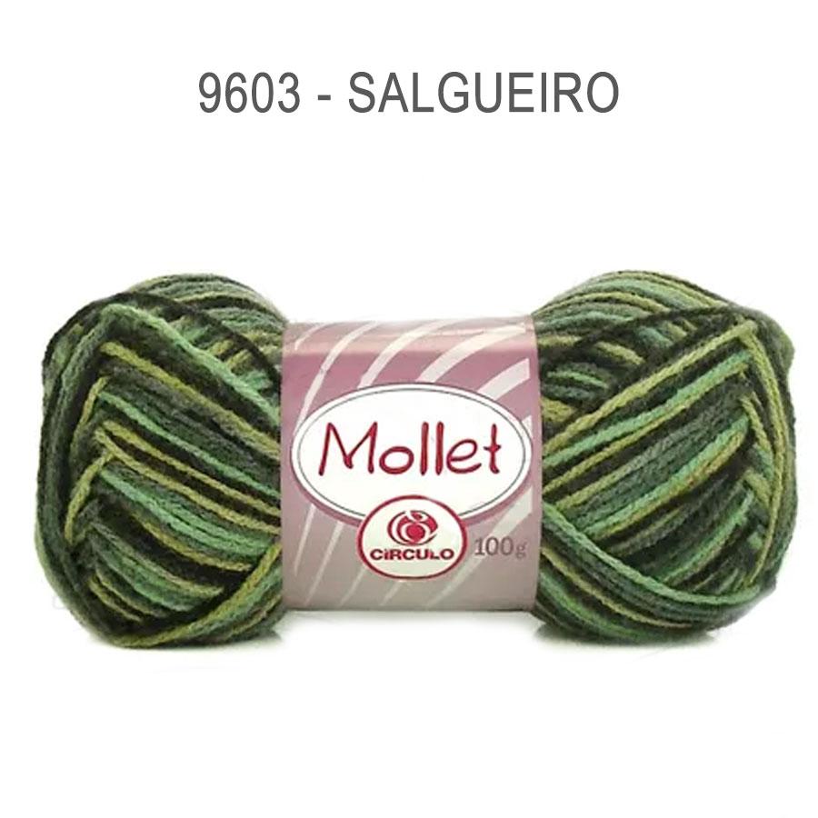 Lã Mollet 100g Multicolor - Circulo - 9603 - Salgueiro