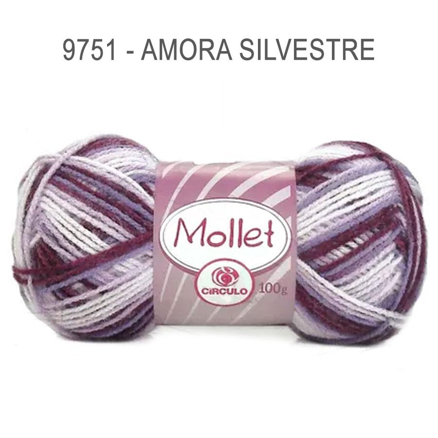 Lã Mollet 100g Multicolor - Circulo - 9751 - Amora Silvestre